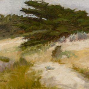 Asilomar Cypress, Cynthia Riordan, Oil