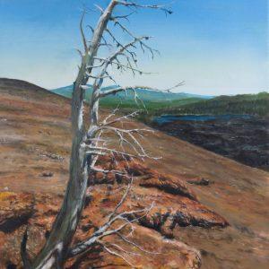 Cinder Cone Life, Ralph Johnson, Oil