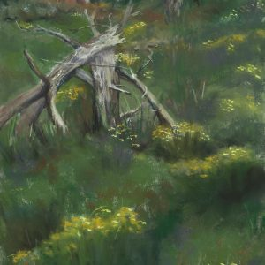 Forest Tales, Amy Glover Martin, Soft Pastel