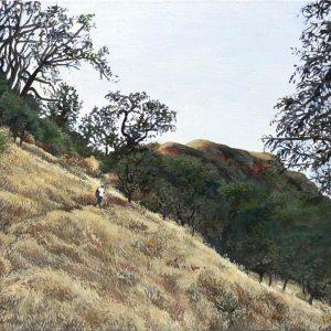 Hunting Tarantulas Mitchell Canyon; Yellow & Gold, Judith Corning, Oil