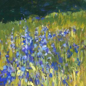 Lupine in Meadow, Joan Hellenthal, Soft Pastel