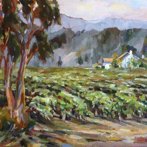 Pleasant Valley Vineyard Aptos, bill Kennann, Oil