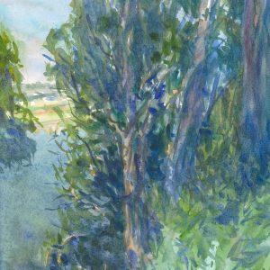 Santa Cruz Eucalyptus, Jeff Ishikawa, Watercolor