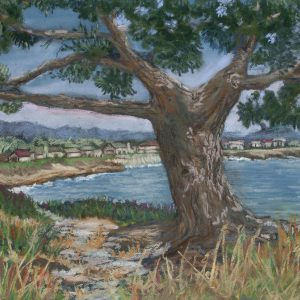 Tree on West Cliff, Mary Dettle, Soft Pastel