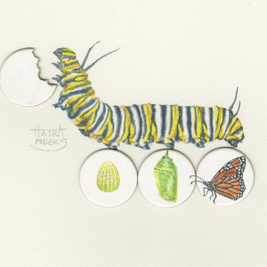 "Monarch Munchies, by Hajra Meeks, Watercolor on 1"" Illustration Board circles and Arches paper, $350"