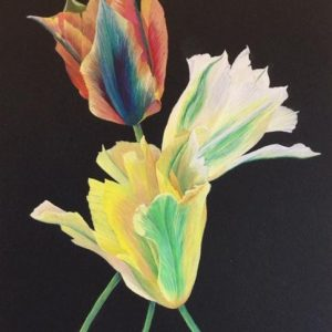 Green Tulips by Linda Valdes, Gouache