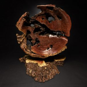 Manzanita Sculpture by Raf Strudley, wood, 2020