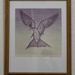 #39 Tern by Daniel O. Stolpe, Woodblock Print