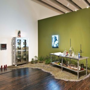 "<b>Amalia Mesa-Bains</b> <i>Curandera's Botanical</i>, installation,  11"" x 10.3, 2011"